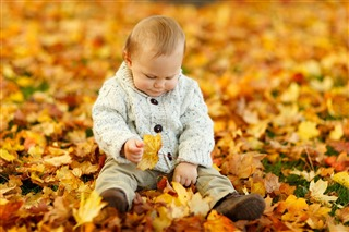young toddler playing with leaves